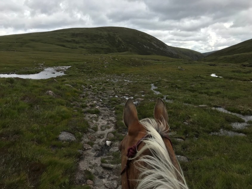 Sometimes Claire has to overcome mixed terrain while riding her horses through Scotland. Rocks, rivers and wetlands are just some of the possibilities.