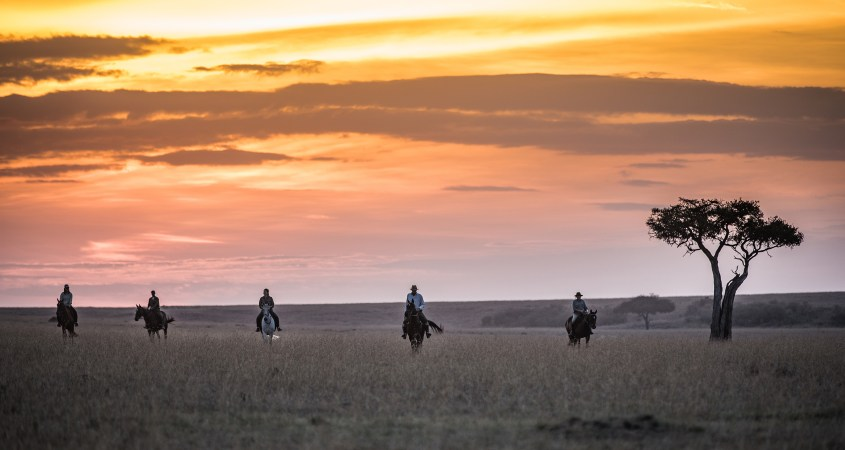 A group of people is riding out on horses in the Masai Mara, Kenya