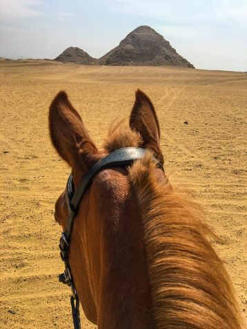 A view between the horse's ears overlooking the Abusir Pyramids during a horse riding excursion in Egypt