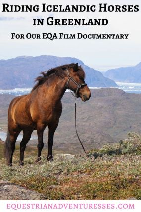 Pinterest Pin for the article: Riding Icelandic Horses in Greenland for our EQA Film Documentary