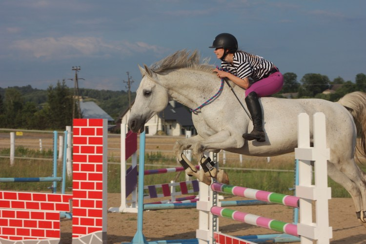 the healing power of horses makes possible a horse riding therapy to fight autoimmune disease by show jumping horses tackless
