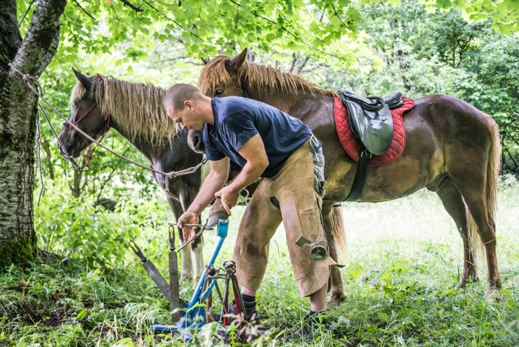 a man puts a lost horse shoe back on to continue a horse riding tour in Slovenia