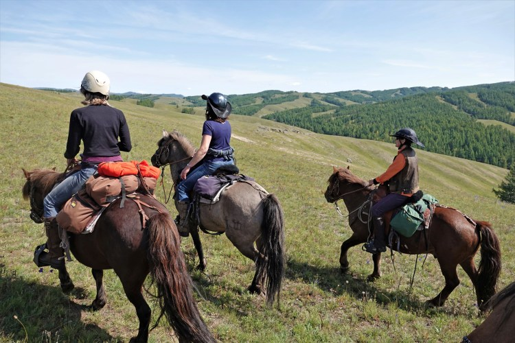 Horseback riding trips in Mongolia are very popular for women, who make up more than 80% of the riding guests
