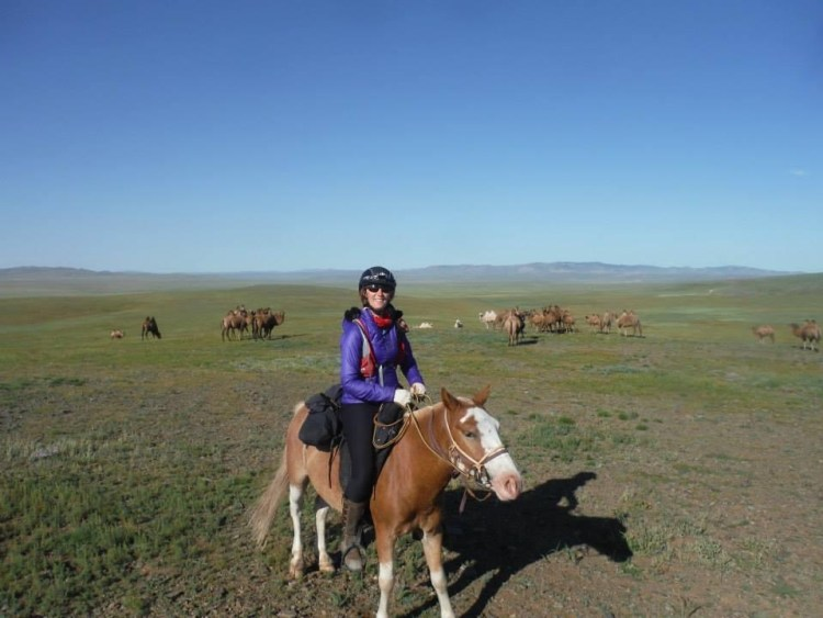 Krystal mounted on a Mongolian horse ready to start another 40km of the mongolian horse race. There are camels in the background