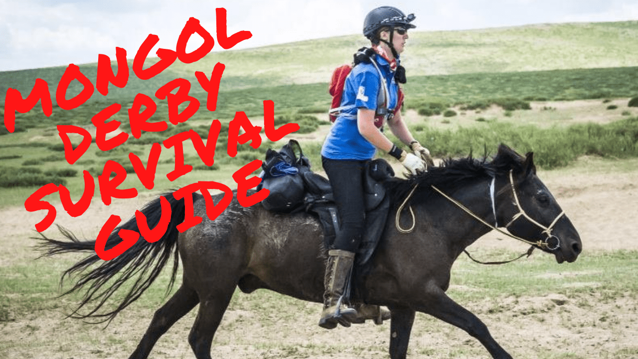mongolian horse race survival guide feature image