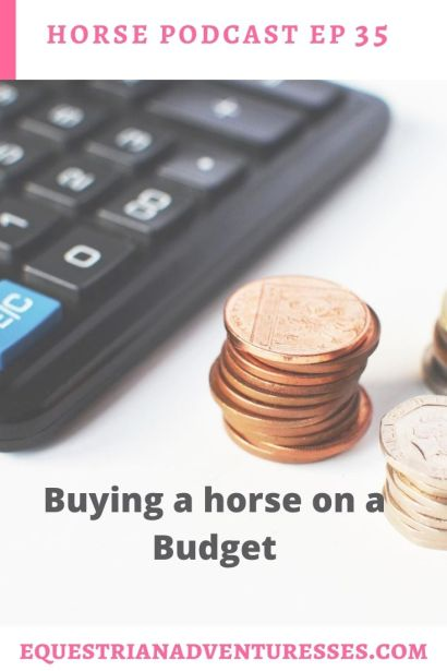 Horse and travel podcast pin - Ep 35 Q&A Buying a horse on a budget