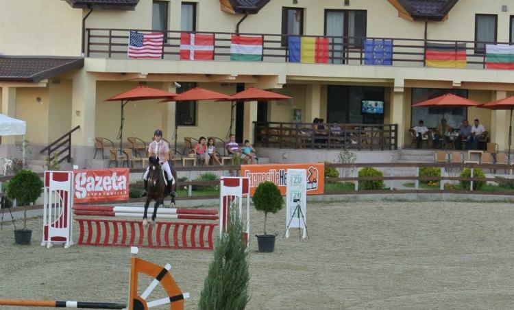 Krystal showjumping a bay horse with a variety of country flags hanging in the background