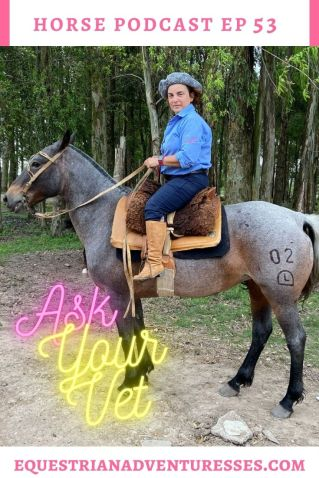 Horse and travel podcast pin - Ep 53 Ask Your Vet
