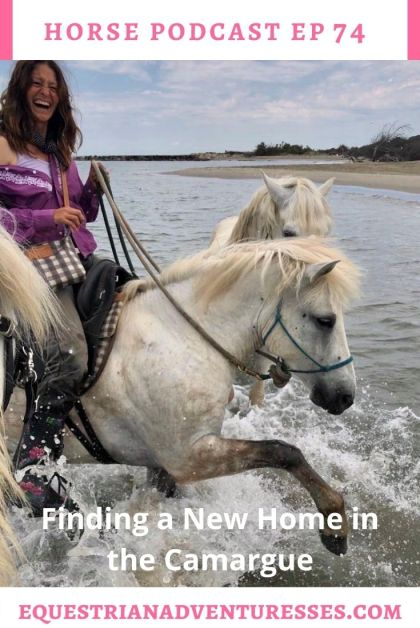Horse and travel podcast pin - Ep 74 Finding a New Home in the Camargue