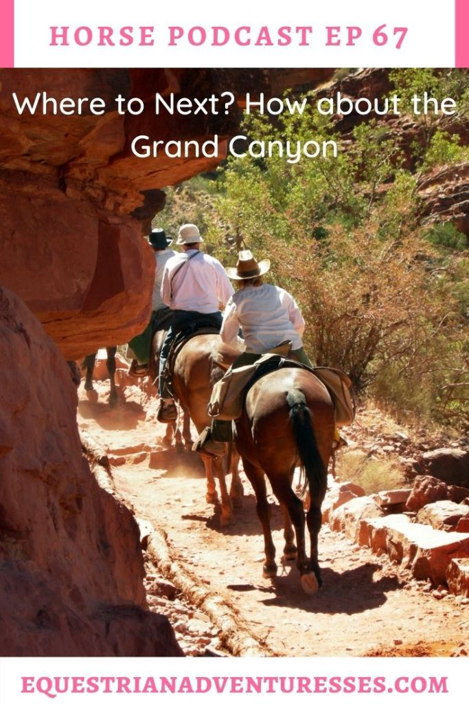 Horse and travel podcast pin - Ep 67 Where to Next? How about the Grand Canyon