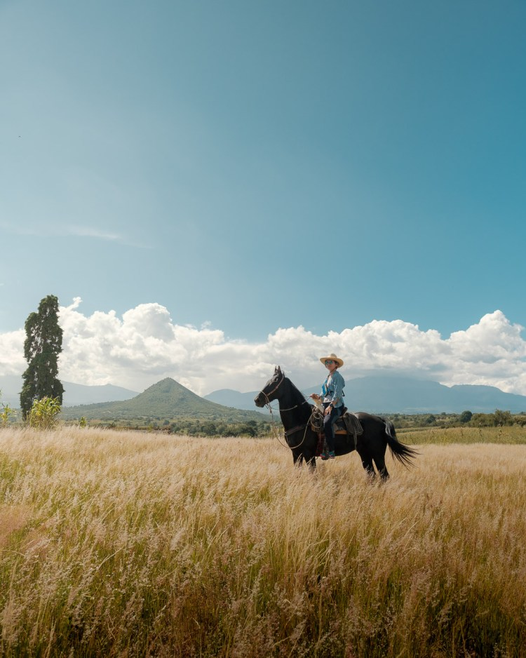 A cow girl or female horse rider riding an Azteca horse in a field in Mexico
