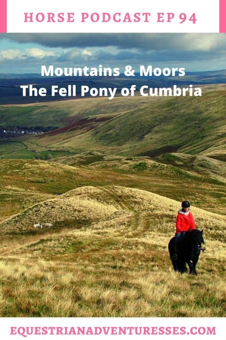 Horse and travel podcast pin - Ep 94 Mountains & Moors - The Fell Pony of Cumbria