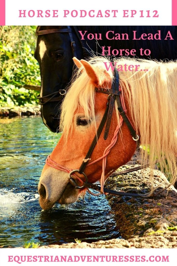 Horse and travel podcast pin - 112: You Can Lead a Horse To Water...