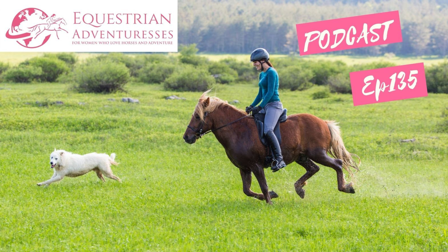 Equestrian Adventuresses Travel and Horse Podcast Ep 135 - Dogs on Trail