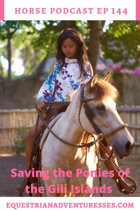 Horse and travel podcast pin - Ep 144 Saving the Ponies of the Gili Islands