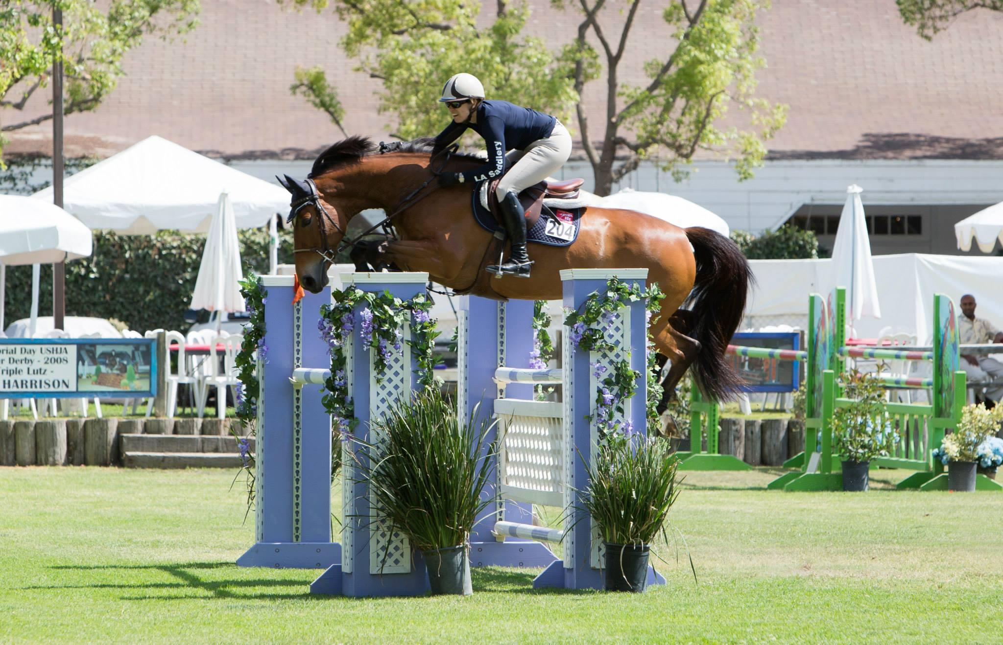 EquestrianCoach.com Blog