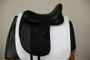 Equestrian Imports Your Full Service On Line Source For