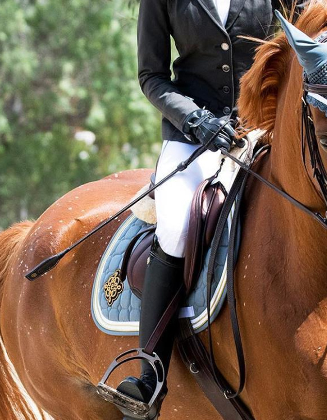 Equestrio | PS of Sweden New Zealand