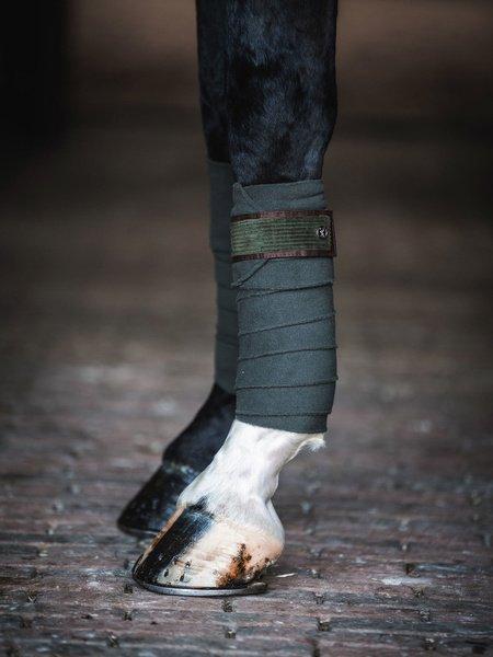 grey saddlepad jumping