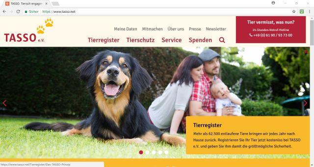 Versicherung & Co. für den Hund Titelbild