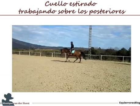 IM_Cuello_estirado_trab_posteriores_pl