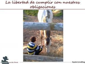 IM_PST_GR_gestion_espacio_libertad_cumplir_obligaciones_