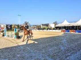Libby Newman Team Equihunter Show Jumping