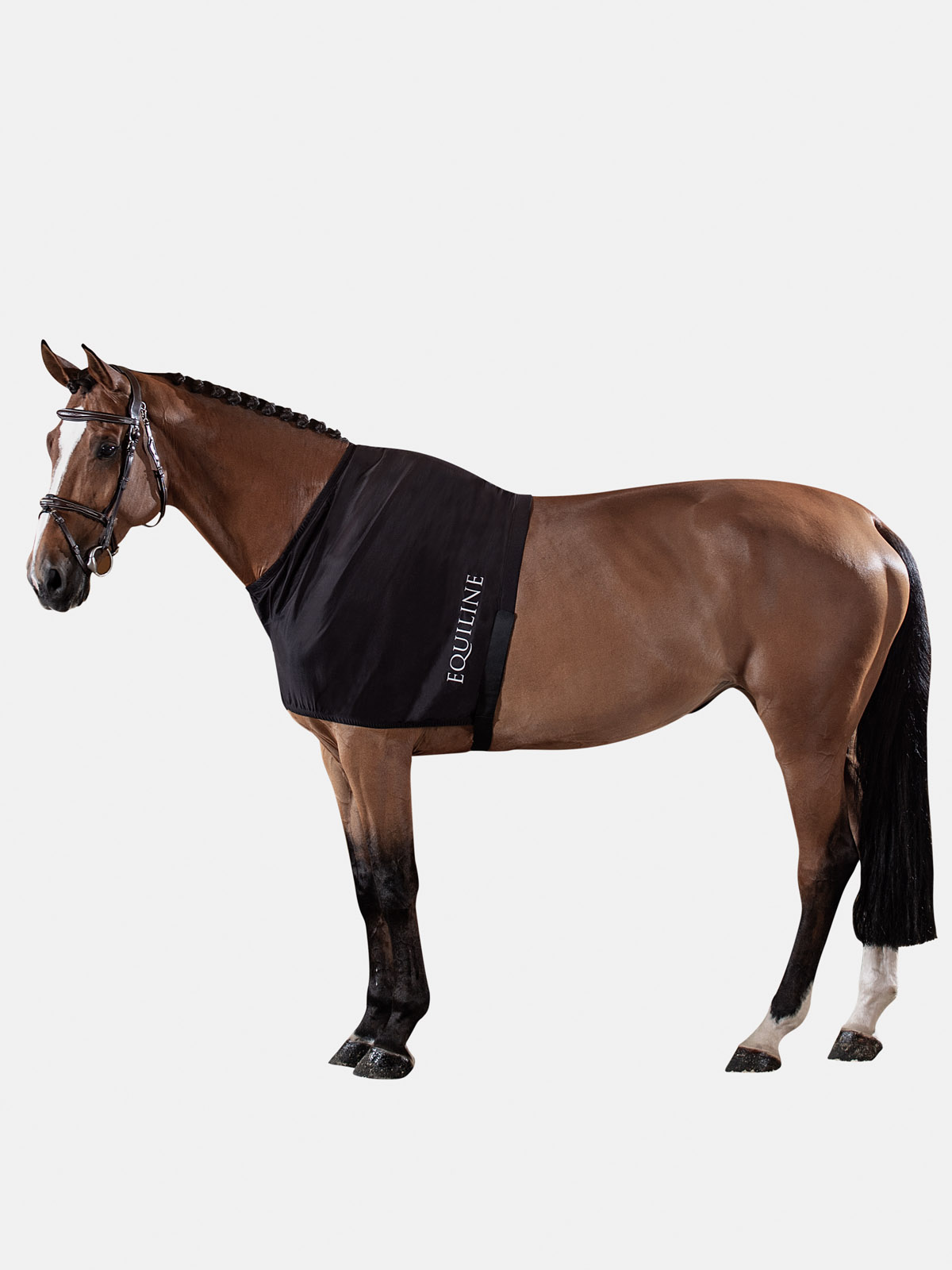 Equiline EDINBURGH horse shoulder guard