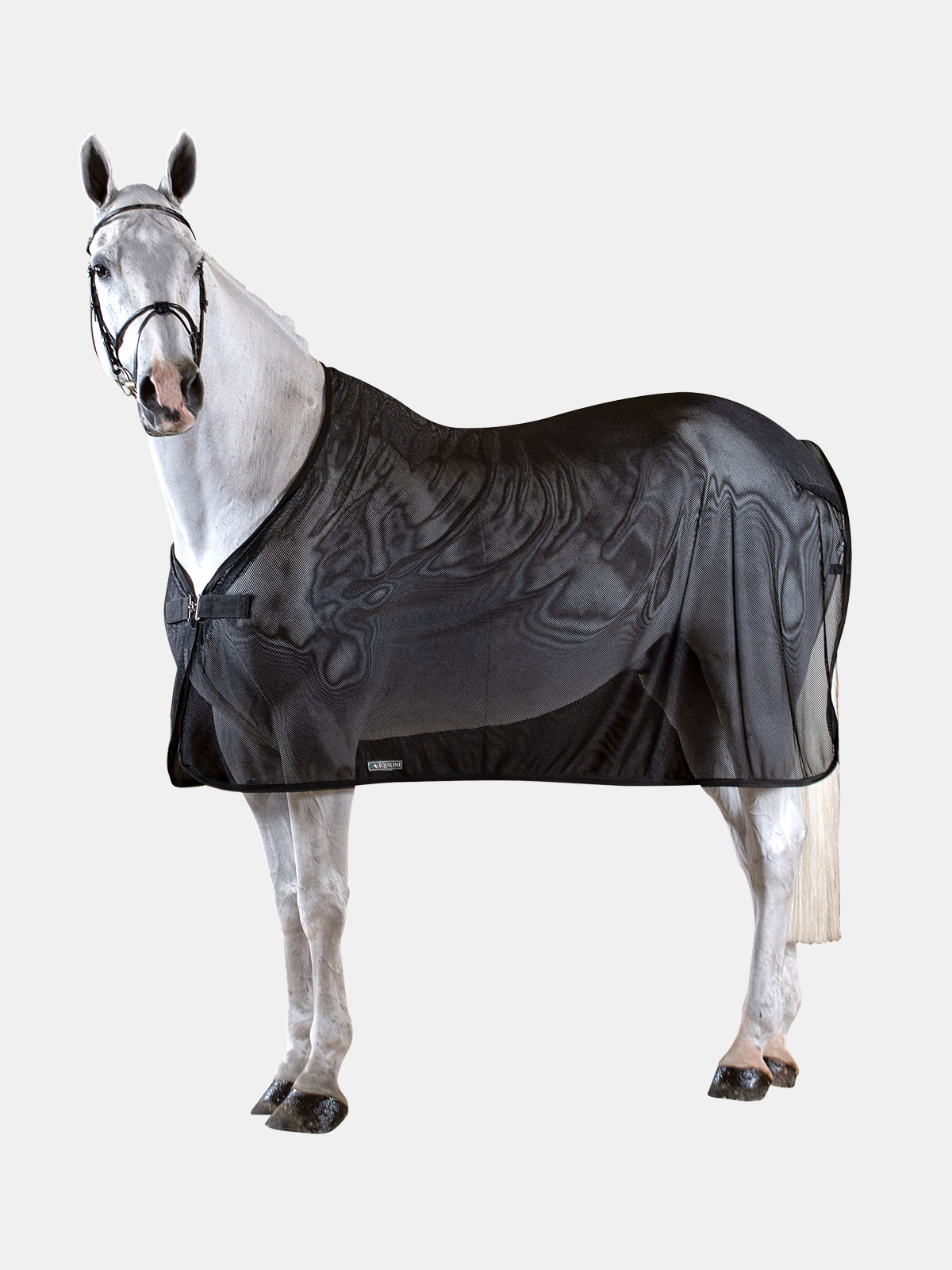 Equiline WESTON horse scrim sheet in black