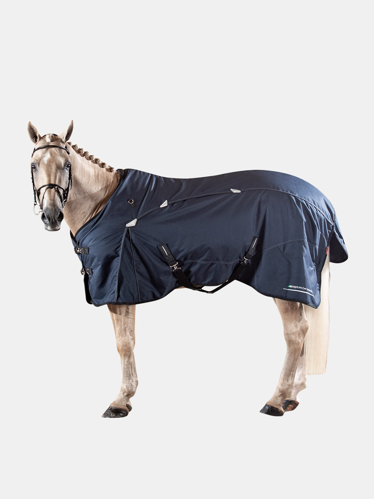 Equiline NED medium weight turnout blanket