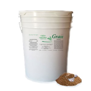 Vitamins & Minerals Horse Supplement Grass