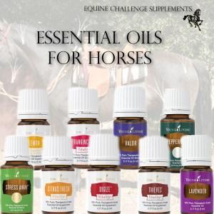 Equine Challenge Essential Oils For Horses