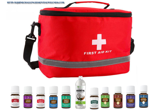 Essential Oil First Aid Kit For Horses