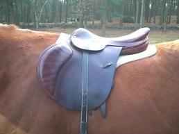 Stackhouse jumping saddle