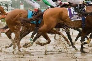 Animal Kingdom almost falls at the start of the Belmont Stakes