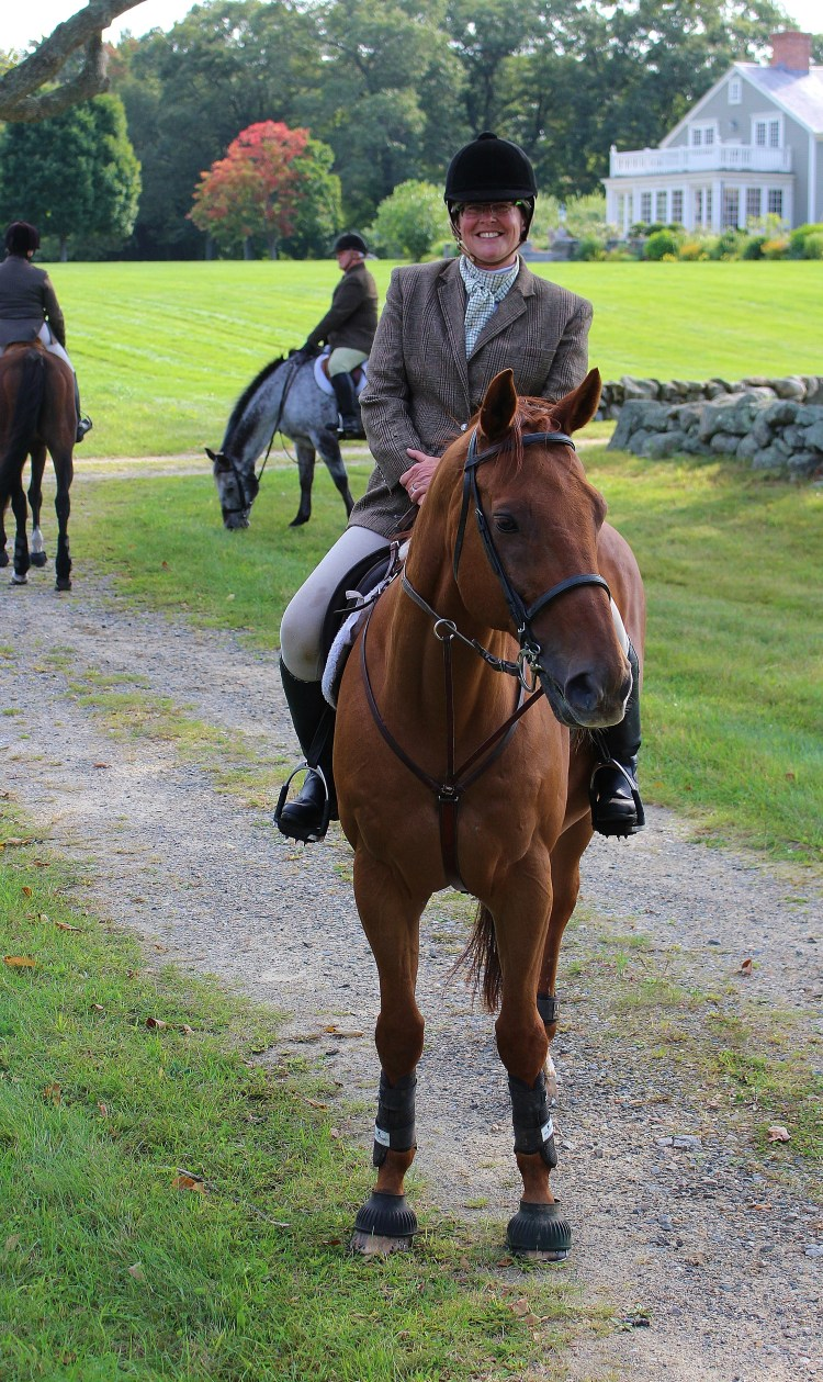 Running or Standing martingale: which to use?