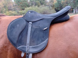 Wintec XC saddle