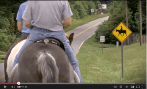 Horse safety video