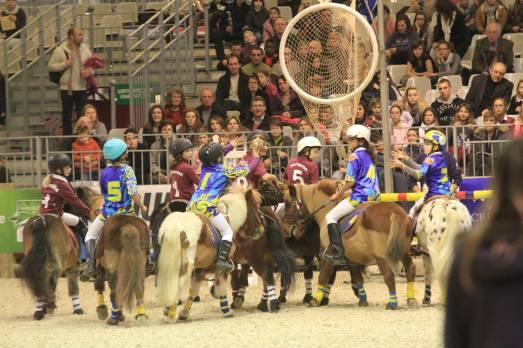 Horse Ball - what a blast!