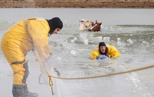 Horses rescued from icy pond