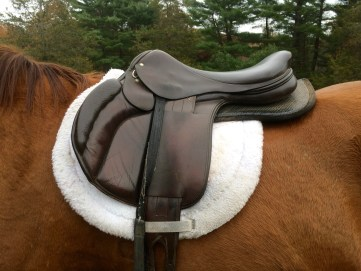 Wide saddle with pad