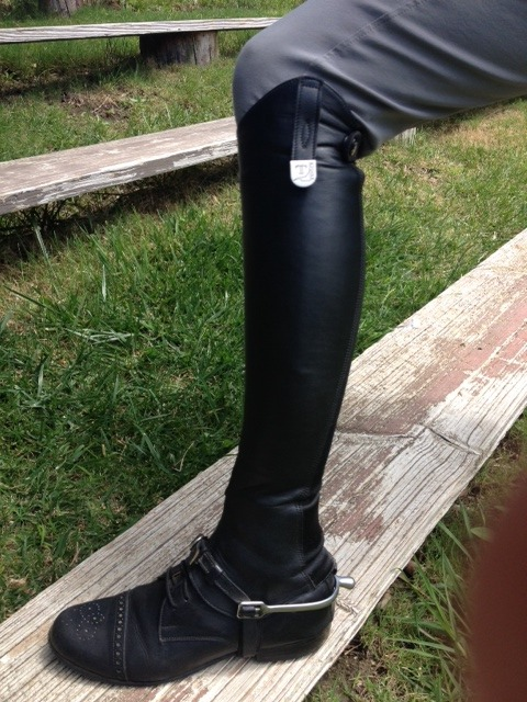 Half chaps and spurs