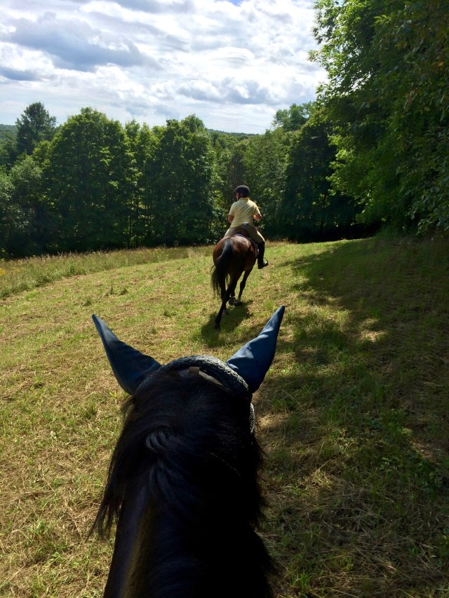 Riding down the meadow