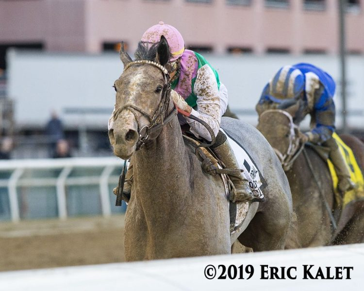 Tacitus wins the wood memorial