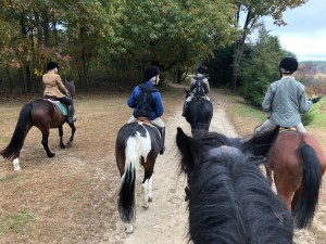 Hacking in great brook