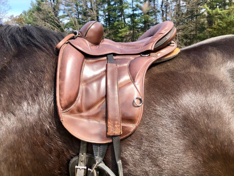 Measure the seat size on a Sensation Hybrid Saddle