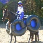 Amazing Horse And Rider Costumes Original Mane N Tail Animal Care