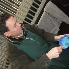 EDT MAKES UP MOULD FOR EQUINE MOUTH MOULDING