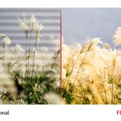 Flicker em Lâmpadas - O fenômeno da cintilação
