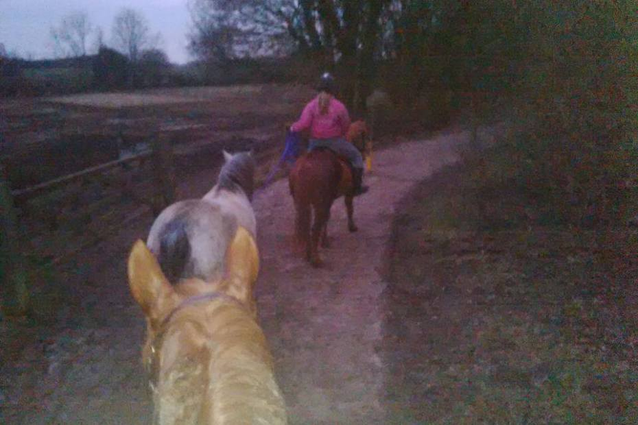 hacking with eva and the ponies